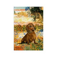 Garden (VG) & Dachshund Rectangle Magnet