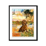 Garden (VG) & Dachshund Framed Panel Print