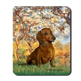 Spring / Dachshund Mousepad