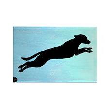 Dock Jumping Labrador Dog Rectangle Magnet