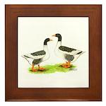 Pomeranian Geese Framed Tile