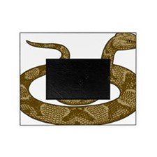 coiled copperhead snake Picture Frame
