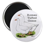 Roman Tufted Geese Magnet