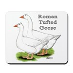 Roman Tufted Geese Mousepad