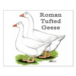 Roman Tufted Geese Small Poster