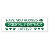 Hugged Shorthair Bumper Car Sticker