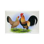 LT Brown Dutch Pair Rectangle Magnet (100 pack)
