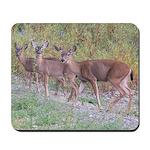 Three Deer Mousepad