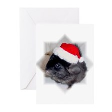 Chinchilla Christmas Cards (Pk of 10)
