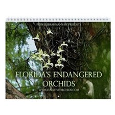 Florida's Endangered Orchids Wall Calendar