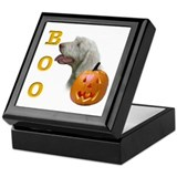 Spinone Boo Keepsake Box