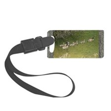 Old window canadian geese Luggage Tag