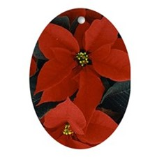 Poinsettia Oval Ornament
