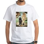 Venus & Newfoundland White T-Shirt
