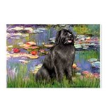 Lilies2-Newfie2 Postcards (Package of 8)