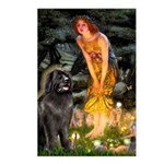 Fairies & Newfoundland Postcards (Package of 8)
