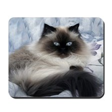 Exotic Kitten Mousepad