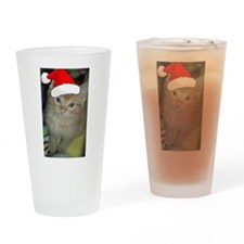 Christmas Orange Tabby Cat Drinking Glass