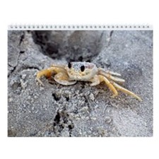 New 2015 Pawleys Island Wall Calendar