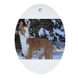 Cute Ibizan hound Oval Ornament