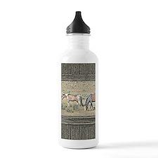 Old window horses Water Bottle