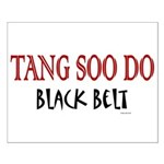 Tang Soo Do Black Belt 1 Small Poster