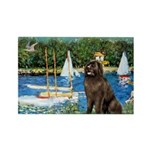 Sailboats & Newfoundland Rectangle Magnet