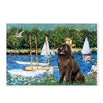 Sailboats & Newfoundland Postcards (Package of 8)