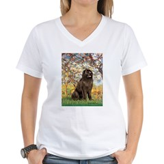 Spring / Newfoundland Women's V-Neck T-Shirt