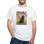 Spring / Newfoundland White T-Shirt