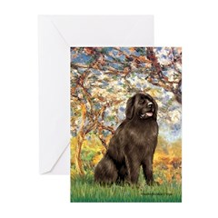 Spring / Newfoundland Greeting Cards (Pk of 10)