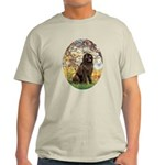 Spring / Newfoundland Light T-Shirt