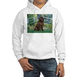 Bridge / Newfoundland Hooded Sweatshirt