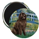 Bridge / Newfoundland Magnet