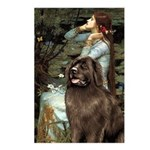Ophelia / Newfoundland Postcards (Package of 8)