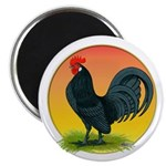 Sunrise Dutch Bantam Magnet