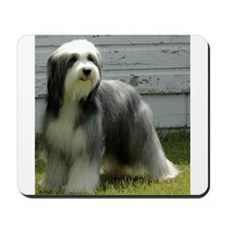 Cute Bearded collie Mousepad