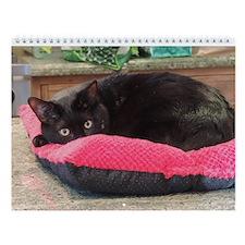 Cute Black cat Wall Calendar