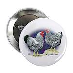 Silver Wyandotte Chickens Button