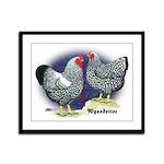 Silver Wyandotte Chickens Framed Panel Print