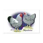 Silver Wyandotte Chickens Mini Poster Print