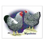 Silver Wyandotte Chickens Small Poster