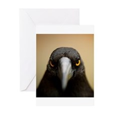 Cute Photography Greeting Card