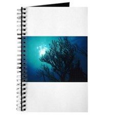 Undersea Journal