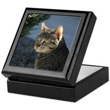 Cat with an attitude Keepsake Box