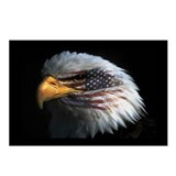 American Flag Eagle Postcards (Package of 8)