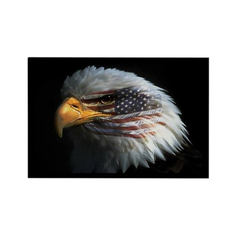 American Flag Eagle Rectangle Magnet (10 pack)