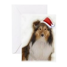 Cute Rescue Greeting Cards (Pk of 10)