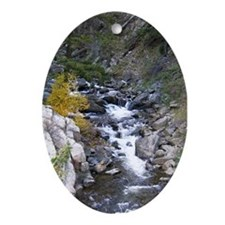 Boulder Falls Oval Ornament