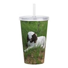 Baby Billy Goat Acrylic Double-wall Tumbler